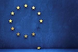 EU referendum.