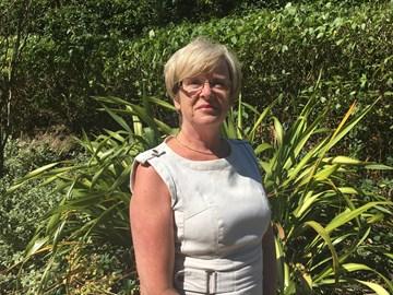 Julie Davies, Van Excellence