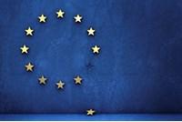 EU referendum, Microlise Conference.
